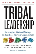 Tribal-Leadership_Multiplier-Mindset-Blog
